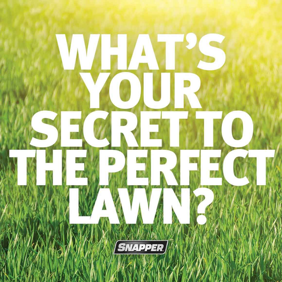 Large white text overlaid on a picture of green grass reads What's Your Secret to a Perfect Lawn?